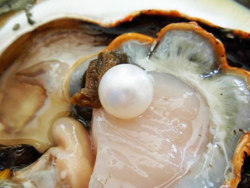 come nascono le perle